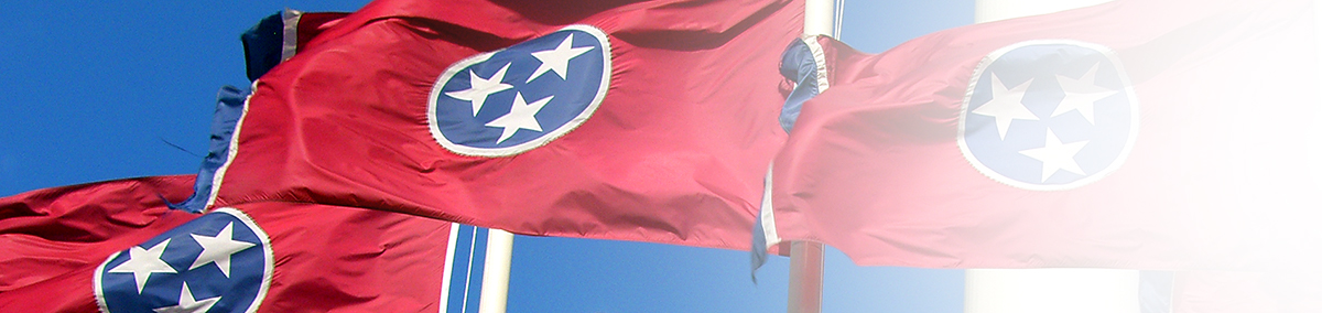MTAS Research-Header - Tennessee Flag