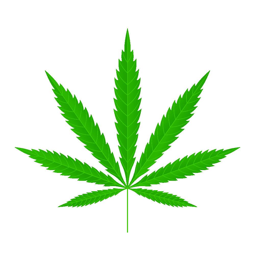 bigstock-Cannabis-Leaf-Icon-Green-Silh-320980663.jpg